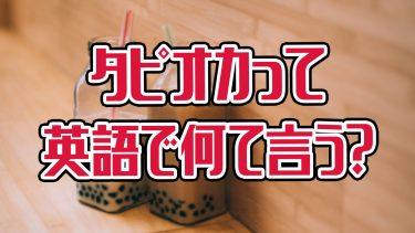 意外と知らない!日本で大人気の「タピオカ」って英語でなんて言うの?