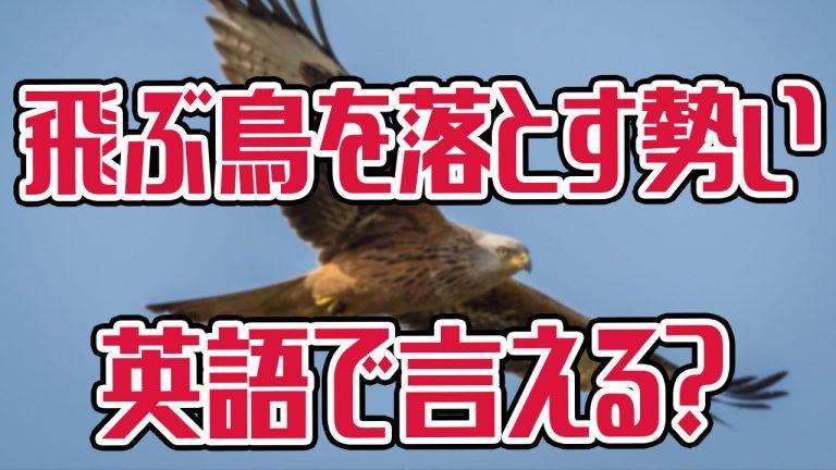 飛ぶ鳥を落とす勢い 英語