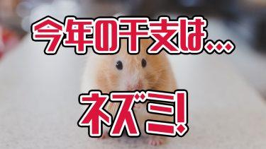 2020年の干支はネズミ!子年の英語はなんて言うか知ってますか?